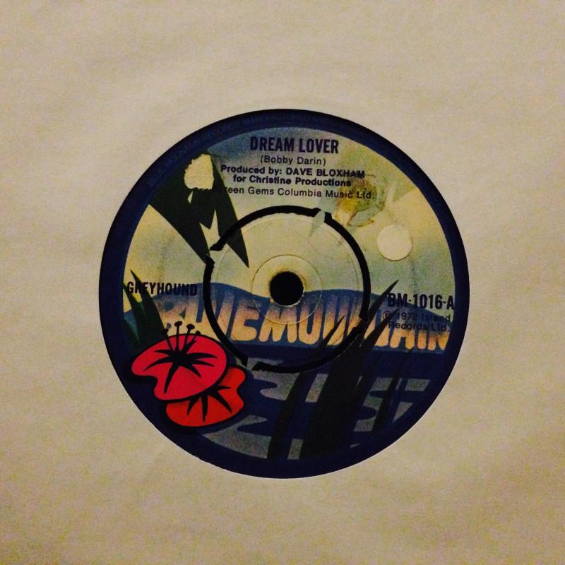 Greyhound Dream lover / Wappadusa
